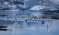 Tundra 08 Photogallery