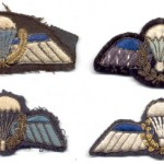 parawings_Frank