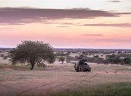 Nederland steunt Mali bij gevechtsoperaties tegen terroristische groeperingen