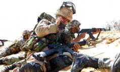 Oefening Bright Star 2005, Grenadiers vooraan in zinderend Egypte