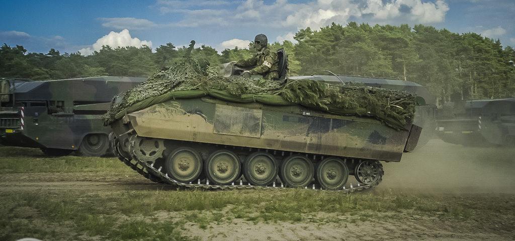 Neushoorns maken zich breed in Polen