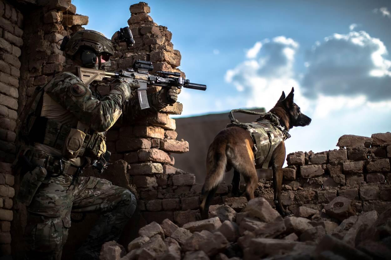 Unieke band tussen handler en zijn Multi-Purpose Combat Dog